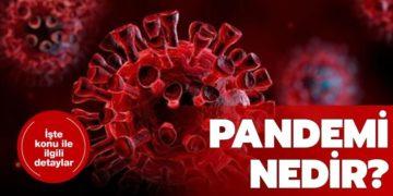 Pandemi Nedir?